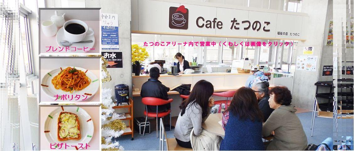 cafeたつのこ